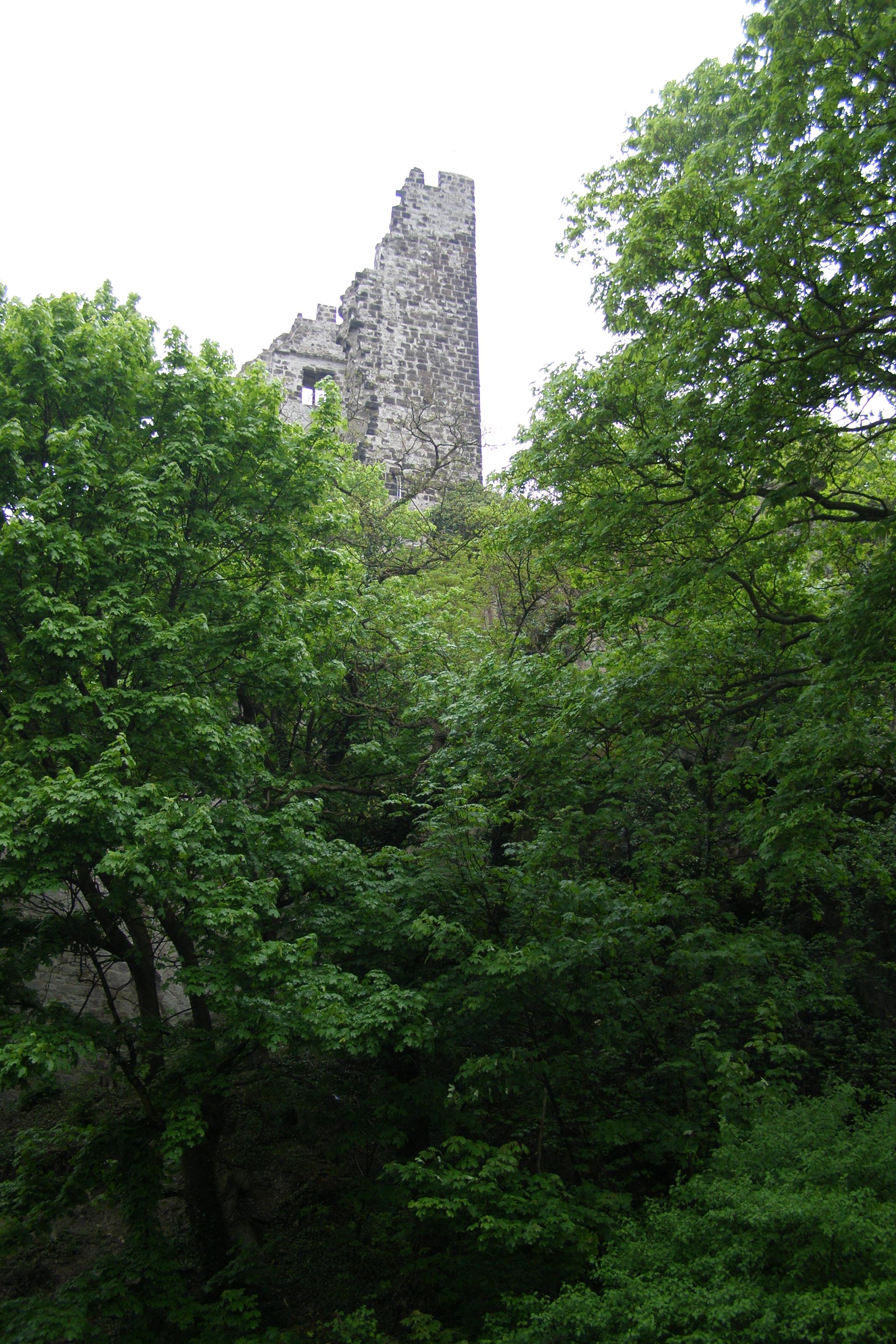 Burgruine am Drachenfelsen