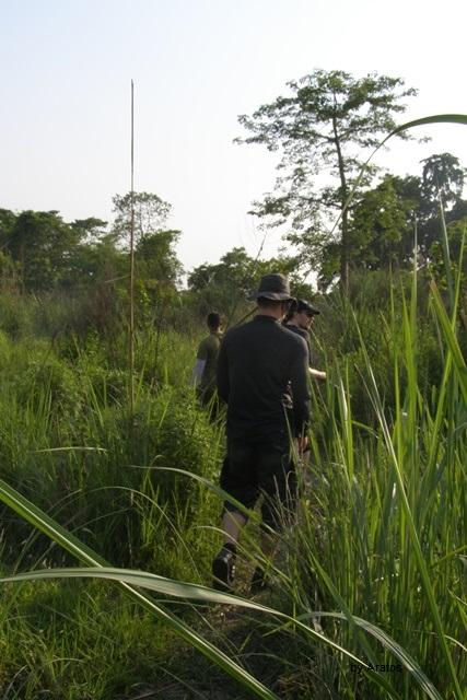 Fußsafari im Chitwan Nationalpark