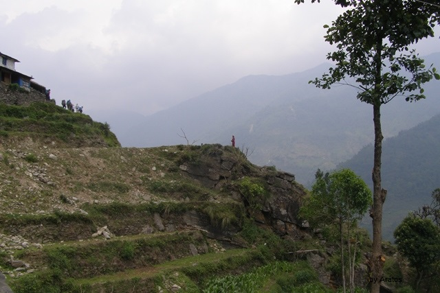 Terrassenfelder