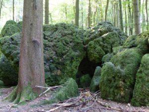 Druidenhain Wohlmannsgesees