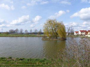 Schloss Weingartsgreuth