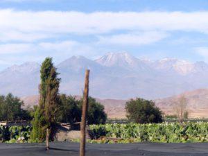 Auf dem Weg nach Arequipa