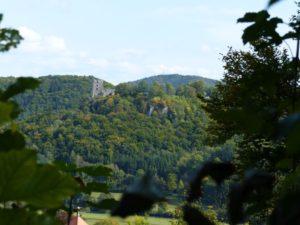 Blick auf die Burgruine Neideck