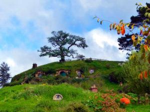 Hobbiton Filmset - Beutelsend
