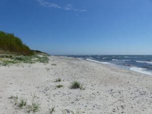 Der Strand in der Nähe unseres Ferienhauses